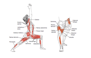 Reverse Lunge with Forward reach