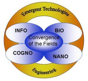 ConvergenceFields